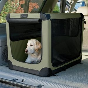 Dog Travel Crate Truck Bed