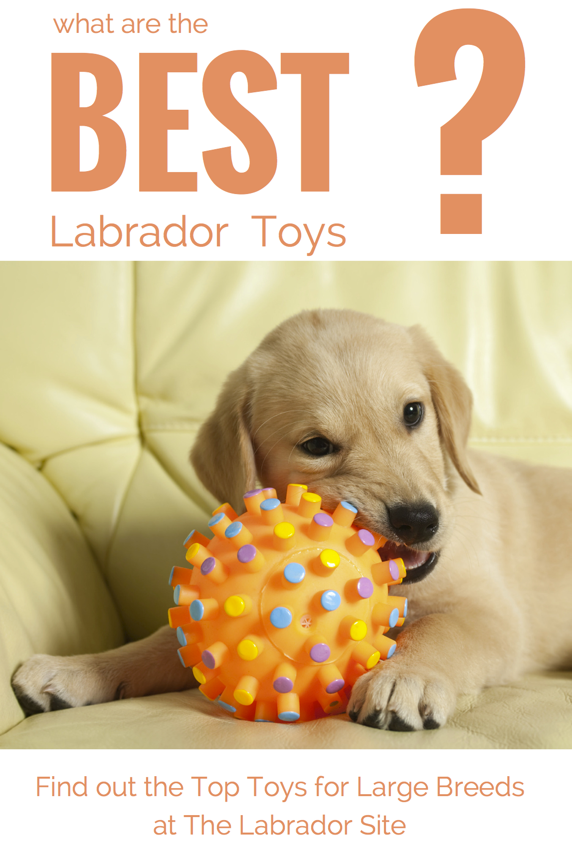Best Dog Toys For Large Breeds | Dog Toys For Extreme Chewers