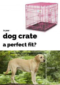 Watch Dog Move Crate