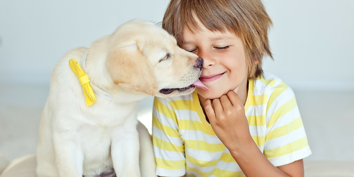 dogs and kids - how to teach kids to play safely with your dog