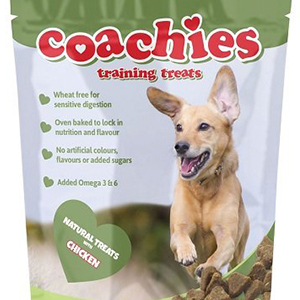 Best Dog Treats For Labs
