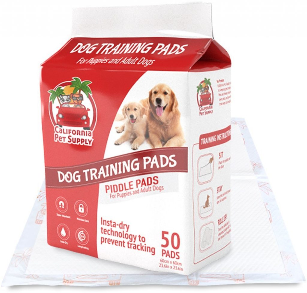 Dog Potty Training How Many Times A Day