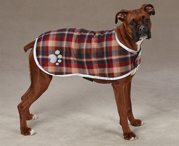 Giant Breed Dog Sweaters Amazon