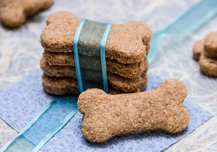 All Natural Pumpkin Dog Treat Recipes